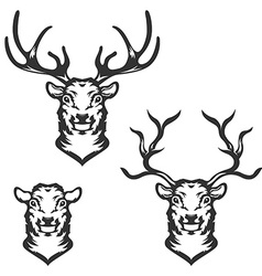 Set of deer heads in vector image