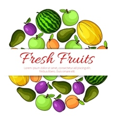 Fresh fruits banner Fruit icons emblem vector image