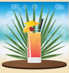 tequila sunrise cocktai vector image