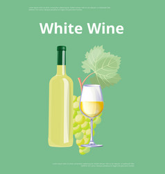 white wine poster bottle and glass bunch of grape vector image