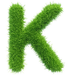 capital letter k from grass on white vector image vector image