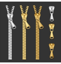 realistic zippers type set vector image
