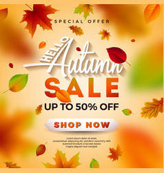 autumn sale design with falling leaves vector image