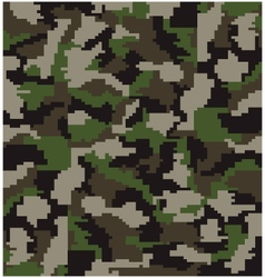 digital camouflage vector image