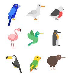 exotic birds in flat style stylized pictures set vector image