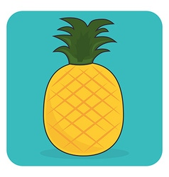 Fresh fruit vector