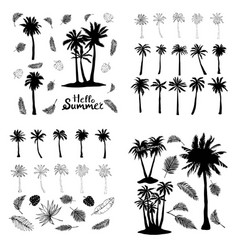 palm tropical tree set icons black silhouette vector image