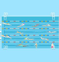 people in pool vector image