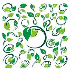 Green leaves set vector image vector image