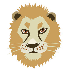 head of lion vector image