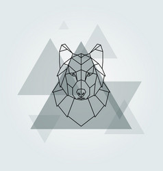 grey wolf head background vector image vector image
