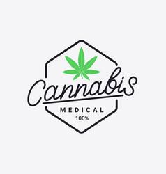 cannabis hand written lettering logo vector image