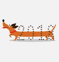 Cute cartoon dachshund dog going through number vector