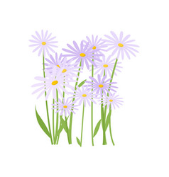 Plenty blue and white daisies growing in flowerbed vector