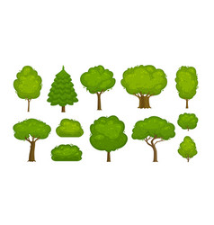 trees and bushes set of icons forest nature vector image