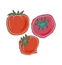 Three tomatoes vector image vector image
