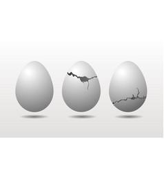 cracked eggshell chicken eggs isolated on white vector image