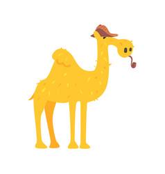 cute cartoon camel in brown cap and smoking pipe vector image