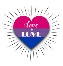 Bisexual heart on white background vector
