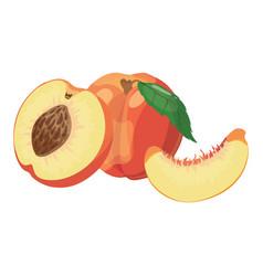 cartoon peach a peach in a cut a vector image