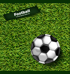 football green grass background realistic vector image