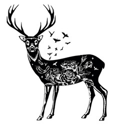 stylized decorative deer ink hand drawn vector image