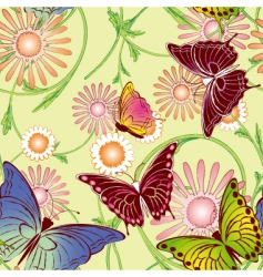 springtime butterfly seamless pattern vector image