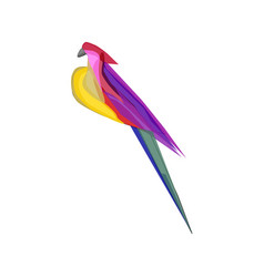 colorful abstract parrot vector image