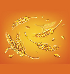 a few ears wheat on a beige background hand vector image