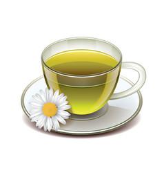 Green tea cup isolated vector