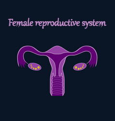 Human organ icon in flat style female vector