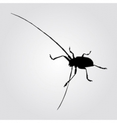 Long horned beetle illustration vector