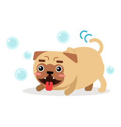 funny pug dog character playing with soap bubbles vector image vector image
