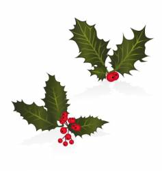 holly vector image vector image