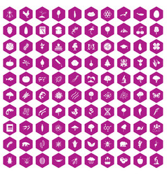 100 microbiology icons hexagon violet vector