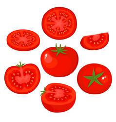 bright set of fresh juice tomato isolated vector image