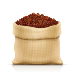 burlap sack with coffee grain vector image