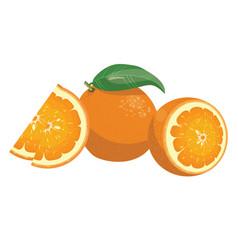 cartoon orange fresh vitamin fruit juicy citrus vector image