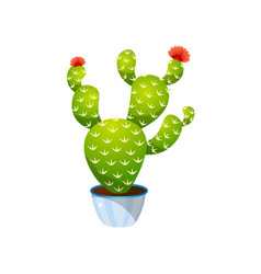 green colorful bunny ears cactus in blue pot vector image