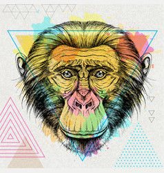 Hipster animal monkey on artistic background vector