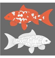 Koi Fish Carp Koi vector