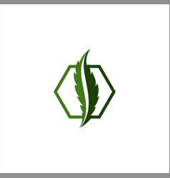 Letter-s-cbd-logo vector