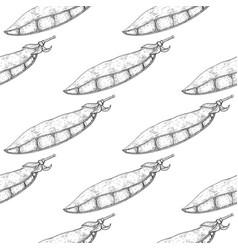 green peas hand drawn sketch vector image