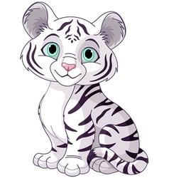 White tiger cub vector image vector image