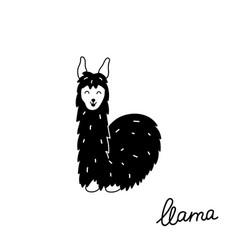 cute llama vector image