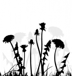 dandelion collection for designers vector image