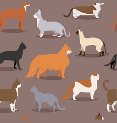 different cat breeds cute kitty pet cartoon cute vector image