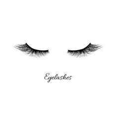 Eyelashes icon isolated vector