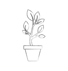 Growing plant sprouts rising from ceramic pot vector