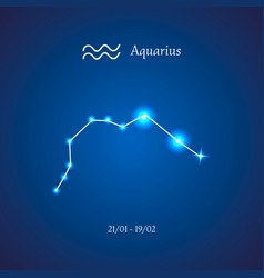 zodiac constellation aquarius the water-bearer vector image